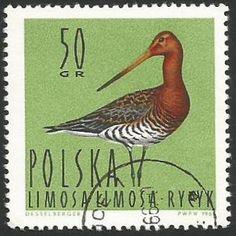 West Art, Postage Stamps, Poland, Europe, Birds, Animals, Black, Seals, World