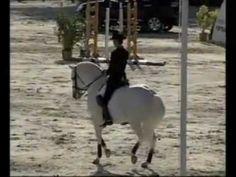 Juan Diego Trevijano's horsemanship https://www.youtube.com/channel/UCszBt1hZu3SGgfRNW-81Y9w