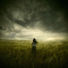 green fields under grey skies