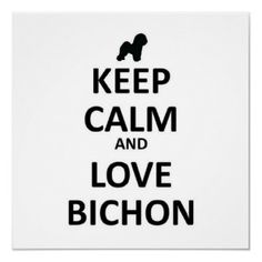 I love my Bichon Frise (Macy) and my bichon/poodle :)