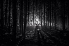 Emmanuel Lubezki's stills from the set of The Revenant.