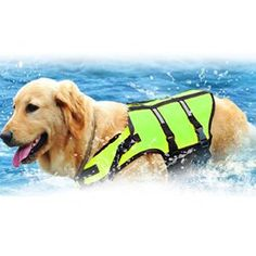 WARRAH Reflective Pet Life Dog Jacket Augmenter la visibilité Easy-Fit réglable vie Dog Vest Preserver haute aide à la flottabilité Pet…
