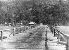 The men who built this bridge over the Dyea river charge the stampeders a toll and got rich without ever going to the Klondike.