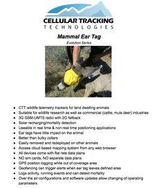 mammal tracker