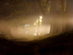 Fog by Meteorolog