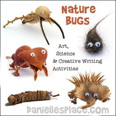 Nature Bugs - Use these fun bugs in your home school science class, creative writing assignments and art classes - Find directions on www.daniellesplace.com ©2014