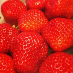 <あまおう(いちご)>今まで嫌いな人にあったことがないほど、いちごは世界的に愛される果物。そのなかでも、一番はやっぱり「あまおう」。真っ赤で大粒な果肉から溢れ出す甘い果汁は、堪らなくクセになります。日本が誇る世界一のいちごです。  博多あまおう >>> http://www.hakata-amaou.com/  【MEN'S CLUB編集長 戸賀敬城】  http://lexus.jp/cp/10editors/contents/mensclub/index.html    ※掲載写真の権利及び管理責任は各編集部にあります。LEXUS pinterestに投稿されたコメントは、LEXUSの基準により取り下げる場合があります。