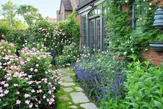 'May Night' salvia and other purple bloomers line the paths that wind through this lush, colorful garden. | thisoldhouse.com