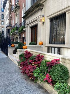 Habitually Chic® » October 2020 in New York Bon Weekend, Autumn Inspiration, Four Seasons, Sunny Days, New York, October, Halloween, Chic, Content