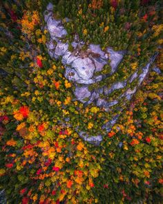 Drone Pictures Capturing the Beauty of Autumn