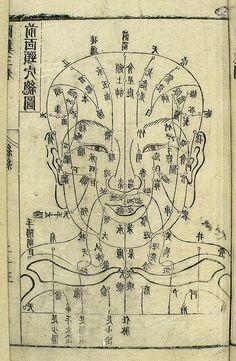 Científicos+descubren+evidencia+biológica+para+la+Existencia+de+acupuntura+Meridianos