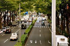 Omotesando Street (Omotesando, Tokyo)