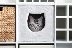 Kallax Regalfach mit eingebauter Katzenhöhle