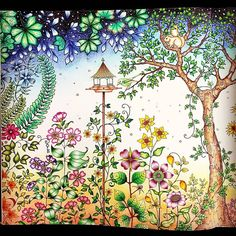 SECRET GARDEN Still Learning How To Do Stars Johannabasford Johannabasfordsecretgarden Secretgardenbook