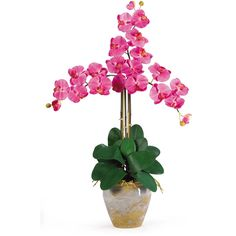 Nearly Natural Triple Phalaenopsis Silk Orchid Flower Arrangement -... ($95) ❤ liked on Polyvore featuring home, home decor, floral decor, silk plants, flower stem, silk orchid plants and orchid arrangement
