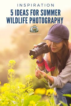 UnavailableHere are some great ideas for spotting and photographing wildlife this summer. It's a great time to get out with your camera! Wildlife Photography Tips, Learn Photography, Photography Basics, Photography Tips For Beginners, Adventure Photography, Summer Photography, Photography Camera, Photography Equipment, Underwater Photography