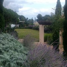 Autunm is on blues in my last creation #garden_design #Gardens #style #luxury #marbella #gardening #gardenarchitect #Paisajista #jardin #Green #cloudy #autumn
