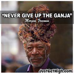 #JustGetHigh: Never Give Up The GANJA! #morganfreeman #ganja #cannabis #nug #famousnug Ganja, Never Give Up, Popular, Movies, Movie Posters, Films, Film Poster, Popular Pins, Cinema