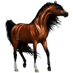 Zephyr by мαℓιиεε, Pferd Paint Horse Palomino mit To - Howrse