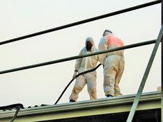 asbestos cladding , asbestos ceiling , asbestos regulations nz , worksafe asbestos