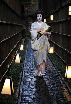 Geiko Ichifuku of Pontocho