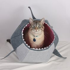 Cat Ball for Shark Week a Unique Cat Bed by TheCatBall on Etsy, $99.00