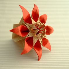 "Kusudama ""Margerite"" by Mio Tsugawa.  Diagrams here:  http://origamio.com/en/diagrams/"