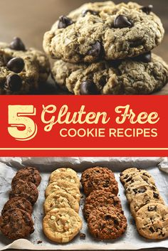 5 Unbelievably Delicious Gluten Free Cookie Recipes You Need to Try! Nowadays, flours like Bob's Red Mill Gluten-Free 1-to-1 Baking Flour can be substituted in cookie recipes for standard flour. Check out all the delectable recipes you could be making here!