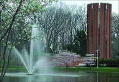 Penn State Altoona