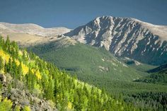 Amazing National Park Vacations with Kids