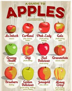 Easy guide to apples