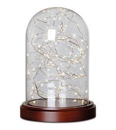 Apothecary & Company Glass Cloche with LED String Lights String lights, Products and LED