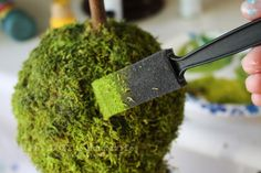 The moss I purchase never have enough green coloring. Its nice to know I can paint it, I think I would spray paint instead if possible. This tutorial comes from Not Just a Housewife Blog.