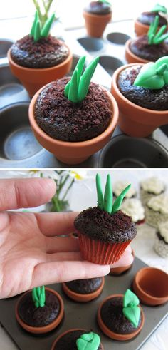 Cupcake potted plants! These would be perfect in the spring.. figure out how to add little tulips to them