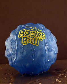 A great dog balled that's filled with water, so every time your dog bites down on it, water squirts everywhere!