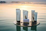 Story from the Sea: How a Dead Sea 'Miracle' Mud Cream was Born Dead Sea Mud, Dead Sea Salt, Body Mask, Dead Sea Minerals, Bareminerals, Bath And Body, Fragrance, Skin Care, Cosmetics