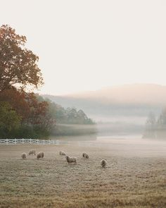 brisk November morning