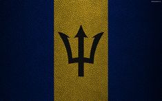 Download wallpapers Flag of Barbados, 4K, leather texture, North America, Barbados flag, world flags, Barbados