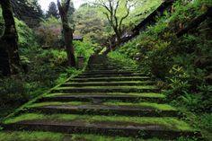 ここは「志明院」の入り口!この階段を登り、登り終えたところにあるのがお寺です!