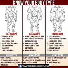 I'm an endomorph. What're you?