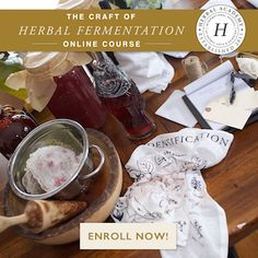Learn how to make your own herbal beer, herbal mead, herbal kombucha, water kefir, and lacto-fermented foods in The Craft of Herbal Fermentation Course! Ginger Soda, Ginger Bug, Ginger Drink, Healing Herbs, Medicinal Herbs, Tea For Digestion, Beet Kvass, Sprouts Market, Probiotic Drinks