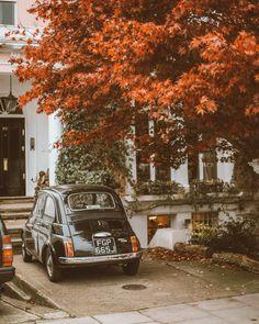 @thesematters @mymatters fall autumn season nature city vintage car London Notting Hill tree