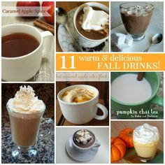 11 Warm & Delicious Fall Drink Recipes  #fall #drinks #falldrinks #beverages