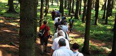 Jubiläumswanderung 10 Jahre Harzer Hexenstieg