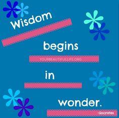 Wisdom begins in wonder Socrates quote via www.YourBeautifulLife.org