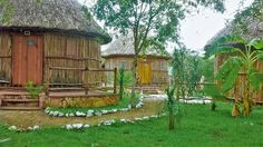 Cenotes, Cabañas y verdadera comida Yucateca a 50 min de Mérida Yucatán  PON TU EMAIL Y TE LLEVAMOS ESTE 16 DE SEPTIEMBRE  INFORMACIÓN EN aldea.mulix@hotmail.com OFERTAS EN www.aldeasmaya.com #AldeaMaya #Yucatan #Mulix #Cabañas #Cenotes