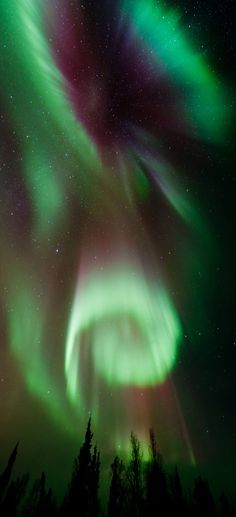 Aurora Borealis/Norhtern Lights - Yellowknife, Canada.   It looks the the hill in Nightmare Before Christmas!!!!!