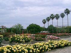 Nagai Botanical Garden 〒546-0034 1-23 Nagaikoen, Higashi-Sumiyoshi-ku, Osaka City