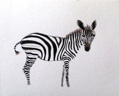 Zebra - Original Watercolor Painting by PinarBelendir on Etsy