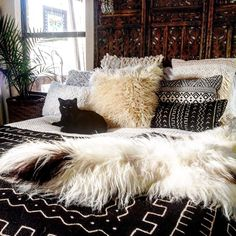 How lucky are our fur babies that get to lounge around on all these yummy textiles ✨and pillows ✨and sheepies! Dream Rooms, Dream Bedroom, Home Bedroom, Bedroom Decor, Bedroom Prints, Master Bedroom, Bedrooms, Deco Boheme, Boho Home